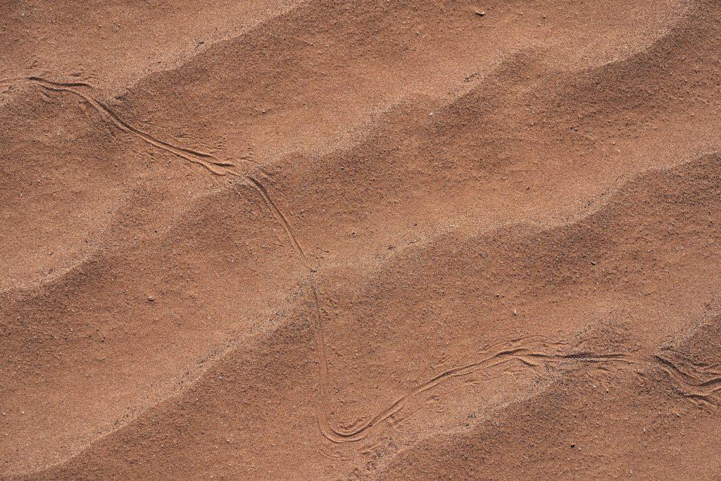 Plage de sable pour le surf